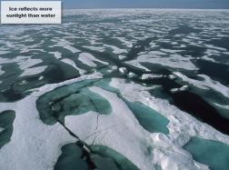 Light ice, dark ocean