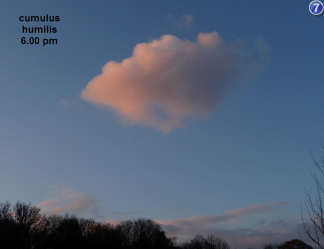 cumulus humilis: never hurt anyone