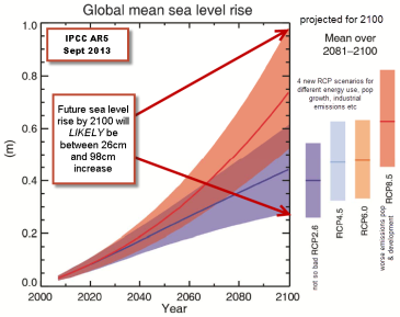 sea level rise by 2100 98cm max