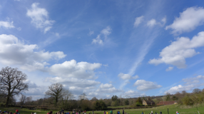 clear cumulus convection midday