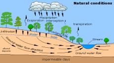 natural river basin flows