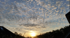 25 June Reigate sunrise with altocumulus
