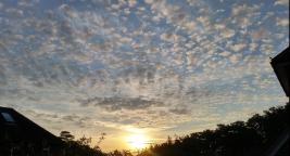 25 June Reigate sunrise with altocumulus