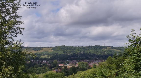 View to Reigate Hill July 2015