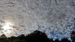 2015-09-06_09-29-15