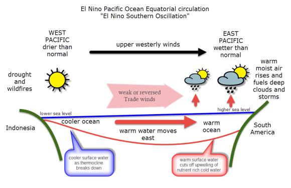 El Nino phase Pacific Ocean