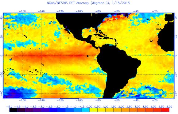 Warm Gulf SST anomaly