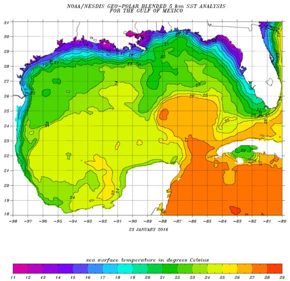 parts of Gulf...warm